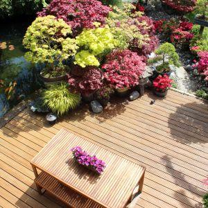 Drewno w ogrodzie. Fot. Bondex