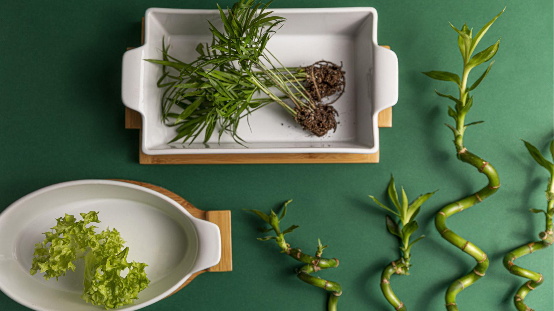 Naczynia ceramiczna Florina Modeno na bambusowych podstawach. Fot. Zasmakuj Radości