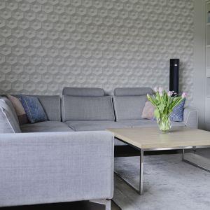 Piękne, spokojne wnętrze urządzone nowocześnie, ale ciepło i elegancko. Projekt: Beata Ignasiak. Fot. Wojciech Łowicki