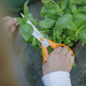 Uniwersalne nożyczki ogrodowe. Fot. Fiskars