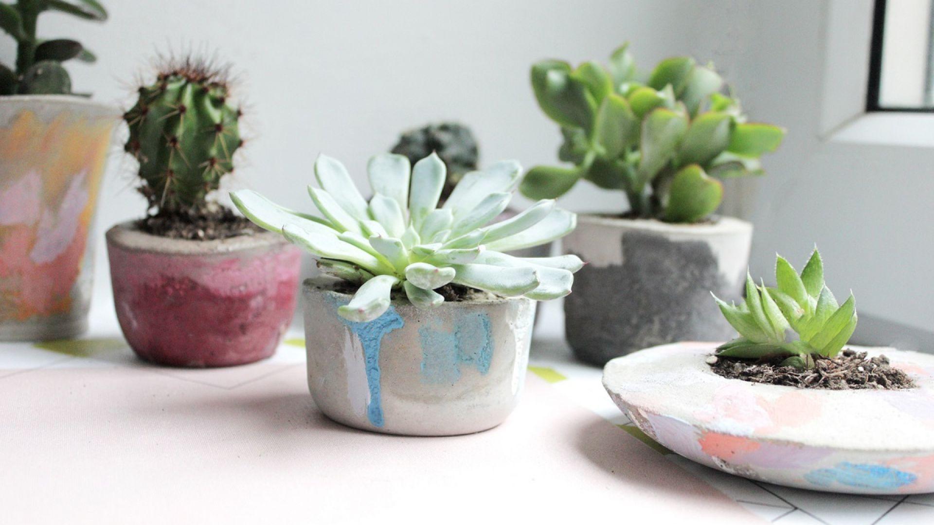 Zrób to sam - kreatywna zabawa farbami. Fot. Annie Sloan