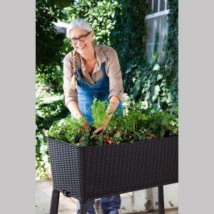 Mały, przydomowy warzywniak i ogródek można urządzić w podłużnej donicy Easy Grow wykonanej z wytrzymałego tworzywa. Fot. Keter