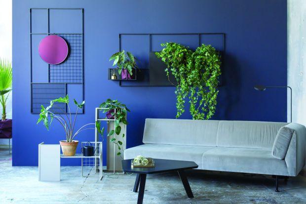 Jak zaaranżować kwiaty we wnętrzu? Może właśnie tak! Design roślinny to nadal bardzo mocny trend w aranżacji mieszkań i biur. Przedstawiamy najnowszą kolekcję kwietników, która spodoba się wszystkich miłośnikom minimalizmu.