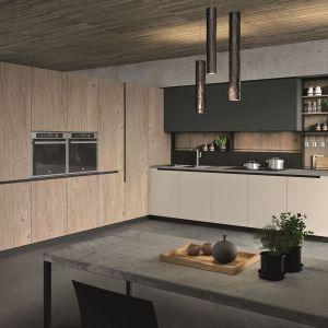 Meble w nowoczesnej kuchni. 10 trendowych kolekcji. Fot. Aran Cucine