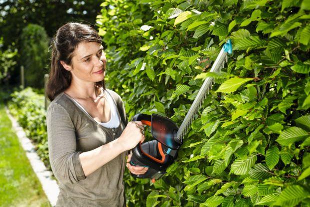 Wiosną i latem nasz ogród wymaga szczególnej uwagi. Musimy zadbaćo trawnik, kwiaty, krzewy i drzewa oraz ewentualne uprawy w przydomowym warzywniaku. Bardzo pomocne będą nowoczesne narzędzia ogrodnicze.