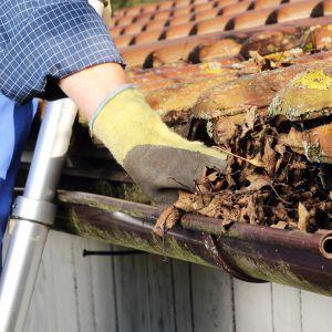 Jeśli rynny znajdują się na wysokości dostępnej z drabiny, ich podstawowy przegląd i konserwację właściciel domu bez większego problemu może wykonać samodzielnie. Fot. Galeco