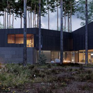 Dom w zgodzie z naturą. Zobacz niesamowity projekt. Projekt: Przemek Olczyk / Mobius Architekci