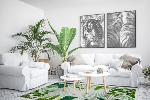 Szukacie ciekawego dywany do pokoju? Interesują was motywy jungle, roślinne wzory, chcecie ożywić wnętrze zielenią? Mamy dla was pięć ciekawych aranżacji z dywanami z polskich sklepów!