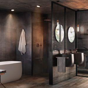 Ciemne kolory w łazience. To jest trendy! Fot. Roca