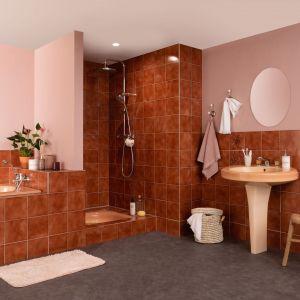 Łazienka przed renowacją