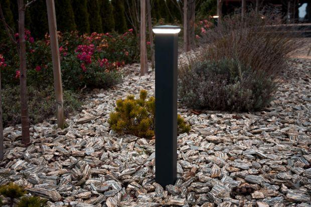Budzący się do życia ogród jak co roku wymaga prac porządkowych. To też najlepsza okazja do zaaranżowania na nowo oświetlenia wokół domu. Właściwie dobrane i odpowiednio rozmieszczone lampy zewnętrzne nie tylko będą pełniły ważne funkcje