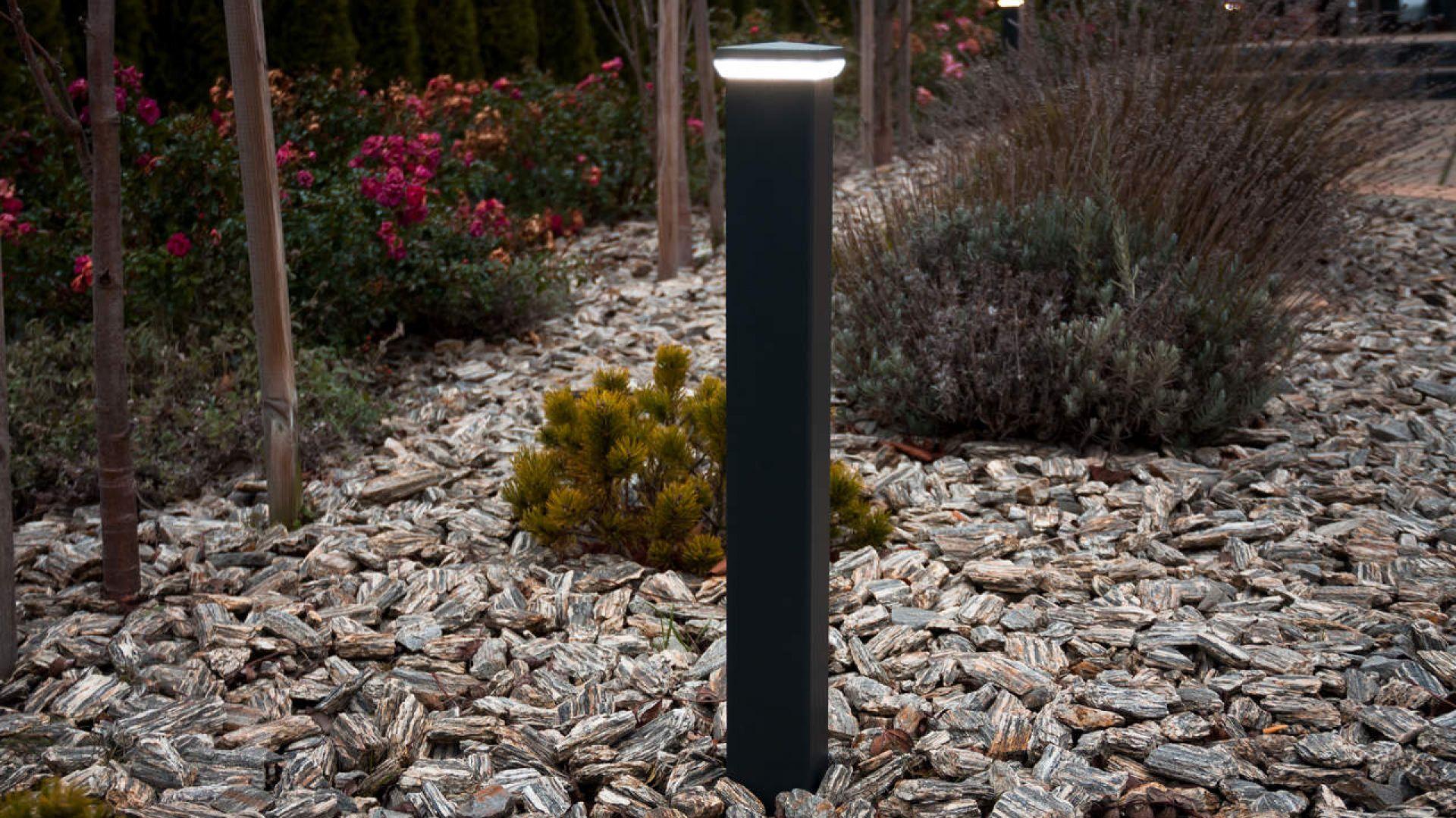 Zobacz swój ogród w nowym świetle. Fot. Plast-Met