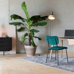 Rośliny doniczkowe to najprostszy sposób na wprowadzenie zieleni do każdego wnętrza. Fot. 9design.pl