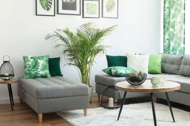 Zielony to kolor, który świetnie odnajdzie się w każdej aranżacji. Jest symbolem spokoju i równowagi, wprowadza do pomieszczenia powiew świeżości oraz pozytywną energię. Zainspiruj się wiosennymi aranżacjami z wykorzystaniem zieleni.