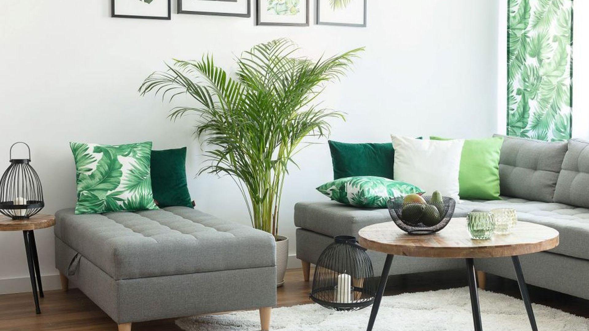 Poszewka Kinga na poduszkę z kolekcji Urban Jungle. Fot. Dekoria
