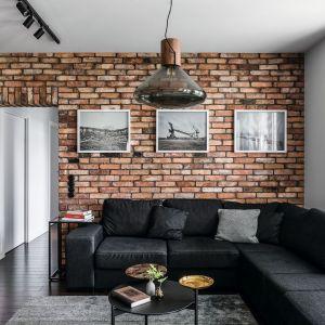 Pomysł na ściany w salonie. Projekt: Projekt: Magdalena Bielicka, Maria Zrzelska-Pawlak. Fot. Fotomohito