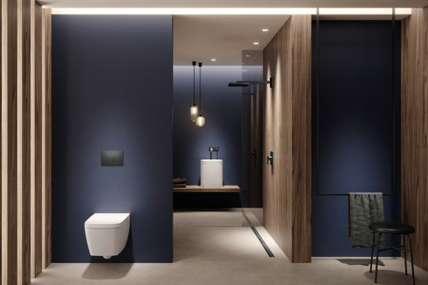 W pomieszczeniach sanitarnych chrom kojarzony jest najczęściej ze srebrną armaturą. Nic dziwnego, że przez ostatnie lata cieszył się tak dużą popularnością – zmienił oblicze łazienek, zachwycał swoim połyskiem i urozmaicał stonowane aran