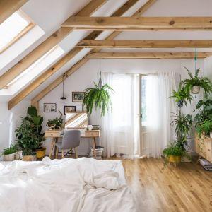 Sypialnia z meblami Nature. fot. Vox