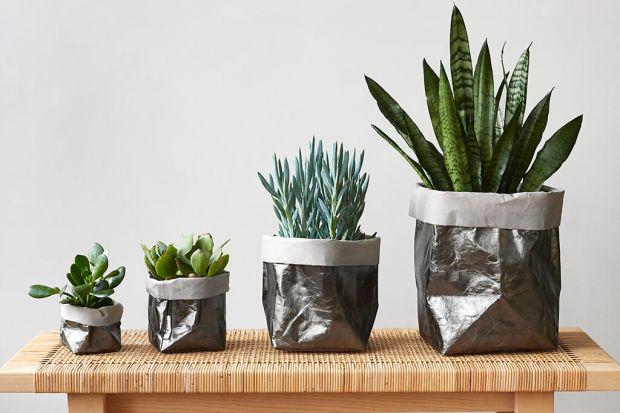 Szukasz niebanalnego pomysłu na eksponowanie roślin doniczkowych? Z pomocą przychodzą worki dekoracyjne. To świetny sposób na dekorację wnętrza! Zobacz!