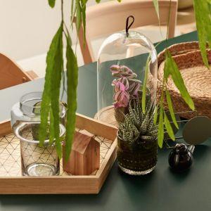 Pokaż swoje rośliny: modne wazony, donice, osłonki. Fot. VOX art deko