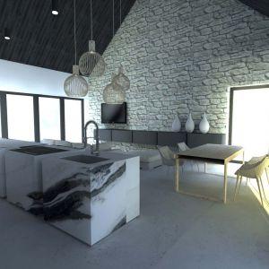 Salon, dzięki swojej wysokości, wydaje się jeszcze bardziej przestronny. Projekt: Joanna Ochota, Janusz Ochota