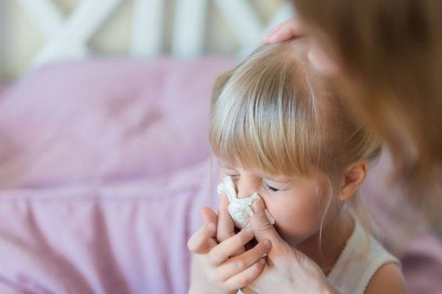 Jak poprawić jakość życia alergika w domu?