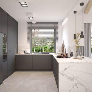 Kuchnia. Projekt wnętrza domu dla czteroosobowej rodziny. Projekt: Katarzyna Czechowicz, Design Me Too