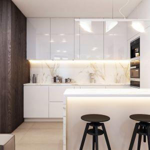 Część dzienna to salon z aneksem kuchennym. Projekt wnętrza: arch. Mirosław Butor, Beforeconcept