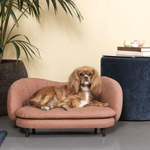 Flora to sofa - legowisko dla psa marki Sofacompany. 599 zł. Fot. Sofacompany