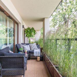 Na tym balkonie zmieściłam się wygodna, dwuosobowa sofa, fotel oraz stolik. Rośli nie tylko pięknie dekorują przestrzeń, ale też stanowią subtelną osłonę przed wzorkiem sąsiadów. Bardzo fajny pomysł. Projekt: Malwina Koziestańska. Fot. Pion Poziom