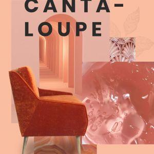 """Cantaloupe - ciepły """"owocowy"""" kolor do wnętrz w stylu vintage, choć świetnie zagra też w tych nowoczesnych. Fot. Essential Home"""