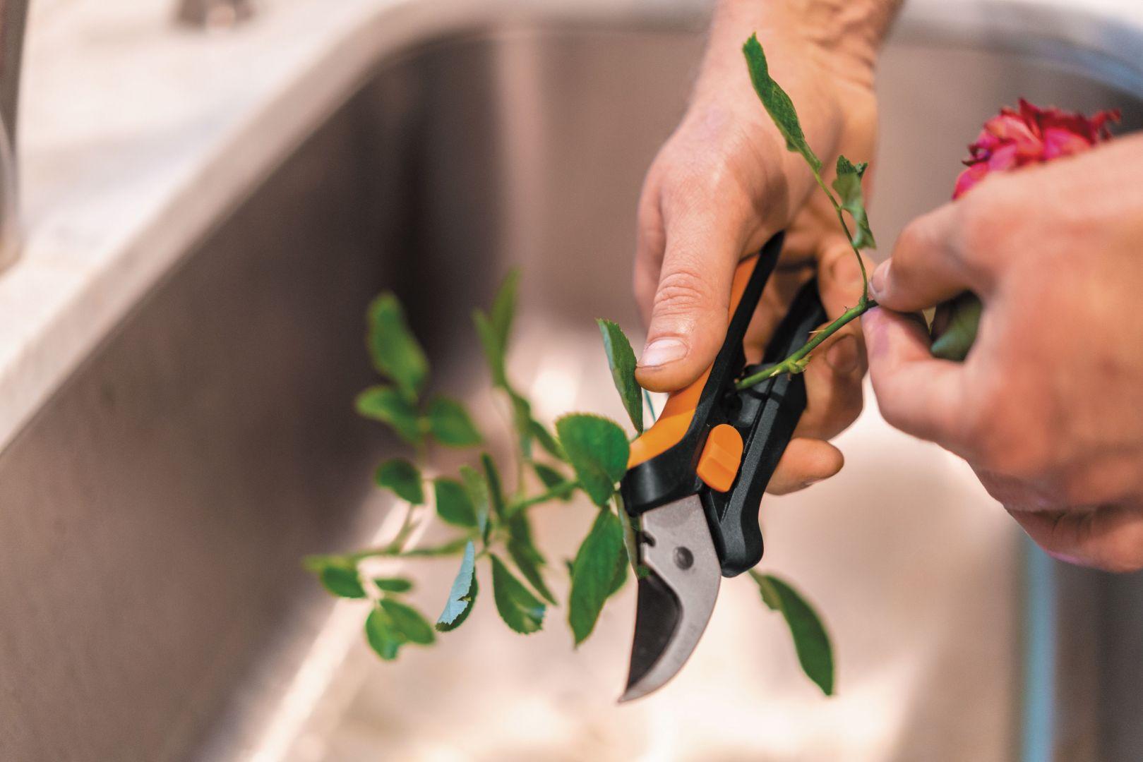 Sekator do kwiatów SP14 SolidTM został wyposażony w specjalny otwór do oczyszczania łodyg i pomoże nam pozbyć się liści i kolców. Dostępny w ofercie firmy Fiskars. Cena: ok. 35 zł. Fot. Fiskars