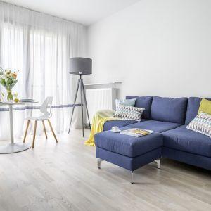 Jasne barwy optycznie powiększają wnętrze. Granatowa sofa dodaje mu charakteru. Projekt Decoroom. Fot. Pion Poziom