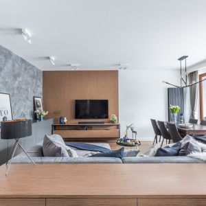 Ścianę z telewizorem zdobi panel z dekorem drewna. Projekt Decoroom. Fot. Pion Poziom