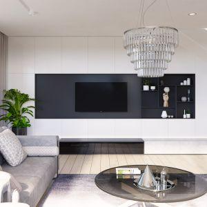W części dziennej zaprojektowano efektowny salon. Nazwa projektu: HomeKONCEPT 59. Projekt wykonano w Pracowni HomeKONCEPT