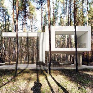 Dom Lustrzany, projekt: Marcin Tomaszewski, pracownia REFORM Architekt. Fot. REFORM Architekt