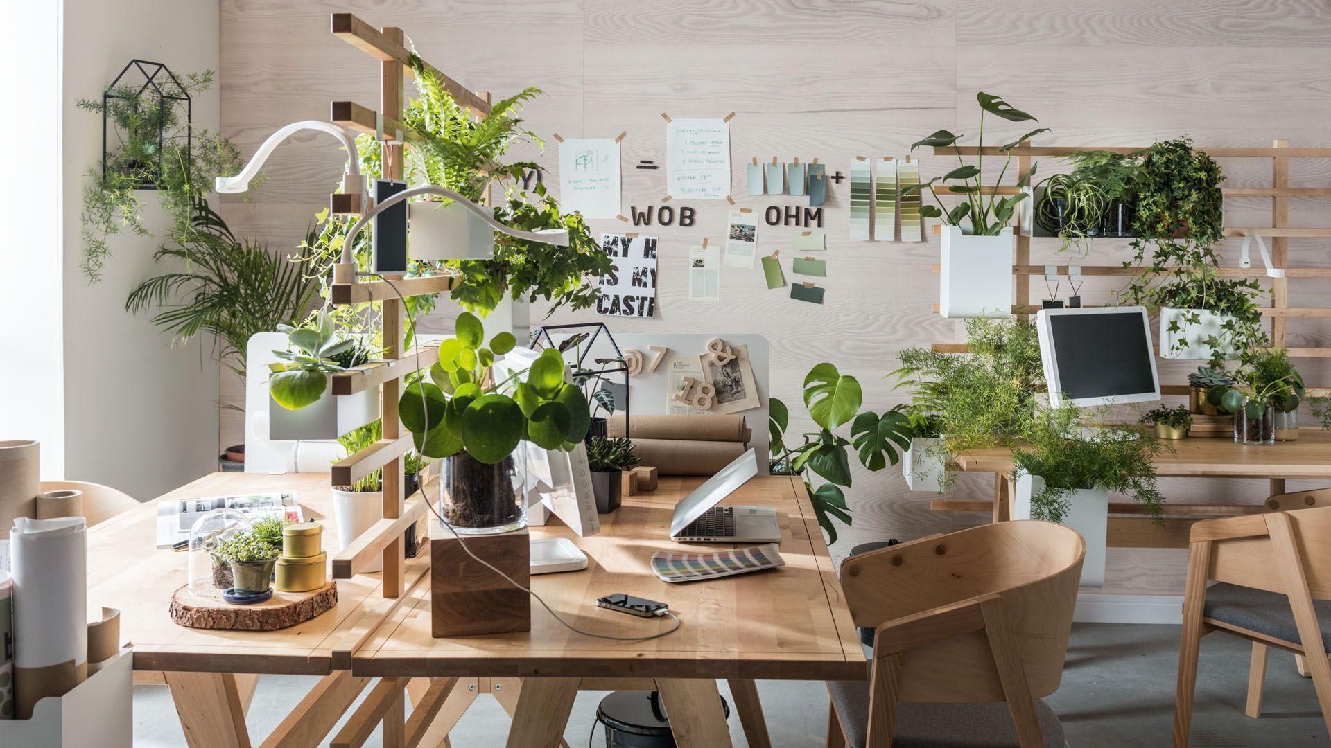 Bazę stanowi drewniany stół z parawanem, który zyskuje dodatkowe możliwości wraz z dokładaniem do niego akcesoriów. Fot. Worknest Vox