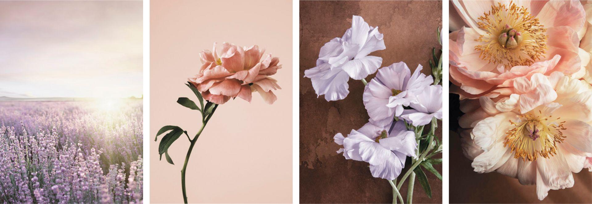 Letnie kwiaty - propozycje plakatów na ścianę. Fot. Desenio.pl