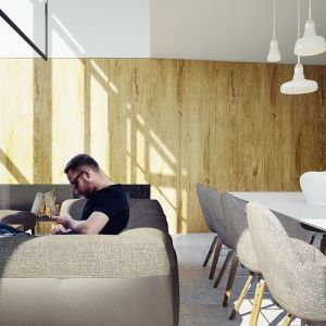Drewniane okładziny to dominujący motyw wnętrza. Projekt wnętrza: Adam Zwierzyński i Anna Porębska z pracowni MUS Architects