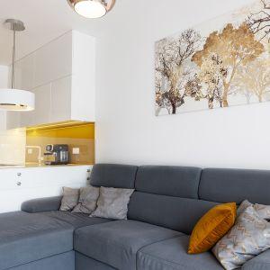 Wszystkie meble w mieszkaniu są proste i nowoczesne, dzięki czemu nie przytłaczają wnętrza. Projekt: Irmina Miernikiewicz. Fot. Katarzyna Dobosz