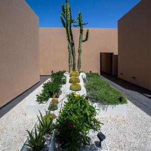 Ogród. Rezydencja Les Olivades Marrakech w Maroku. Głównym materiałem użytym we wnętrzu jest kompozyt. Źródło: Hi-Macs. Fot. Creativefriends
