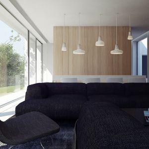 Dom Pod Lasem. Projekt części dziennej. Projekt: Anna Porębska, Adam Zwierzyński, MUS Architects