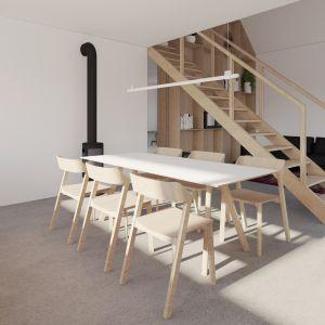 Propozycja projektu wnętrza domu Finn. Fot. Supergut Studio