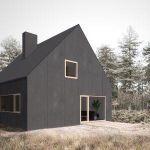 Projekt domu Finn, za którym stoją architekci z Supergut Studio ma być cenową alternatywą dla typowego mieszkania w mieście. Całkowity koszt budowy to 300-400 tys. zł. Fot. Supergut Studio