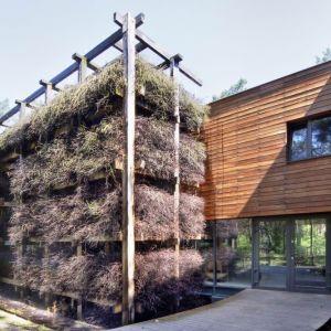 Konstrukcja z gałęzi tarniny sprawia, że dom jest mocno osadzony w naturze i przyrodzie, zmienia się wraz z porami roku. Projekt i zdjęcia: Kulczynski Architekt