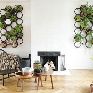 Trudno wyobrazic sobie styl urban jungle bez żywych roślin. Na zdjęciu loftowe kwietniki modułowe wykonane ze stali. Fot. Horticus Living