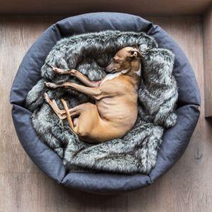 Okrągłe łóżko dla psa. Ok. 950 zł. Fot. Charley Chau