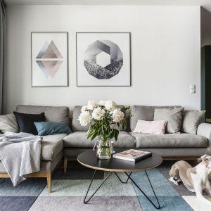 Dywan w spokojnej kolorystyce stanowi idealne dopełnienie aranżacji salonu. Projekt: Raca Architekci. Fot. Fotomohito