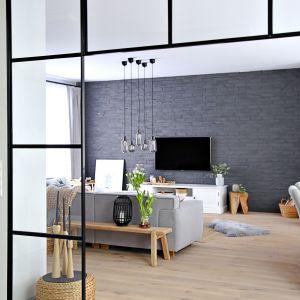 Ścianka z czarnych profili w loftowym stylu to modny pomysł do wnętrza. Projekt wnętrza: SHOKO design
