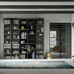 Drzwi uchylne RPE z aluminiową ramą i parą zawiasów ukrytych w wieńcu szafy. Fot. Raumplus